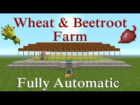 Minecraft Tutorial : Fully Auto Wheat and Beetroot Farm