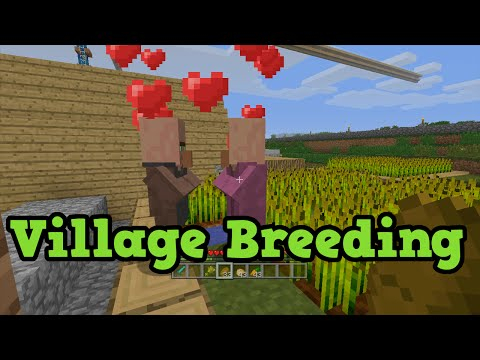 Minecraft Xbox 360 / PS3 - TU31 NPC Villager Breeding Tutorial