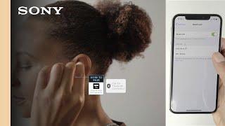 Setup Guide   Sony WF-1000X Wireless Noise-Canceling Headphones