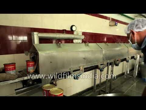 KC Das Rosogullas traveling long sterilising machine