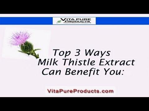 Milk Thistle Benefits -Top 3 Ways This Liver Support & Detox Works