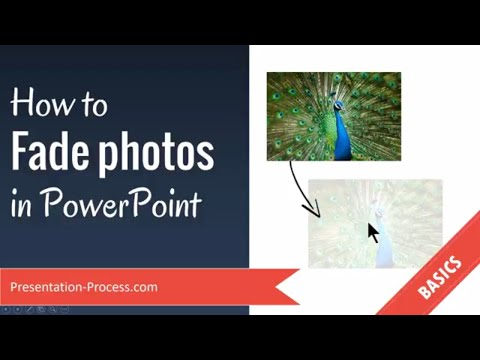 How to Fade photos in PowerPoint