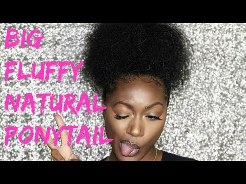 HOW I GET MY BIG CURLY NATURAL PONYTAIL | ALANNA FOXX