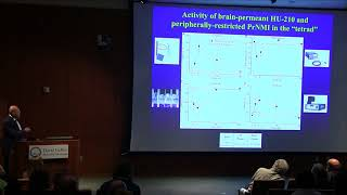 Cannabinoids for Chronic Pain - Igor Spigelman, PhD   UCLA Health Cannabis Research Initiative