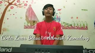 Download Cinta Luar Biasa Andmesh Kamaleng Cover Mp3 Lagu Yt