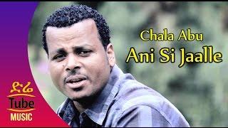 Top 10 Punto Medio Noticias | Oromo Music Caalaa Abbuu