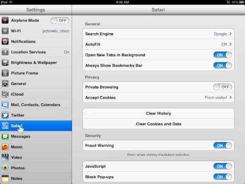 Apple iPad Set Default Search Engine