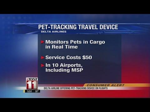 Delta Airline Offering Pet-Tracking On Flights