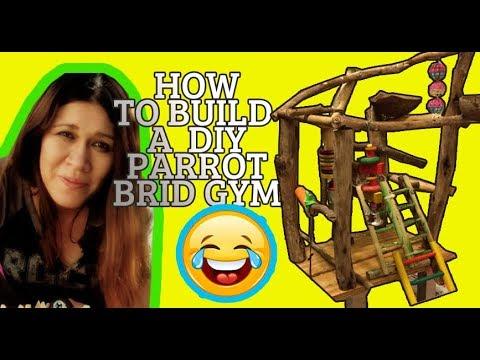 HOW TO MAKE A DIY Bird Playground | Birdgym * ORGANIC WOOD*