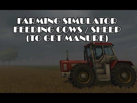 Feeding Cows / Sheep (Making Manure)  - Farming Simulator 2013