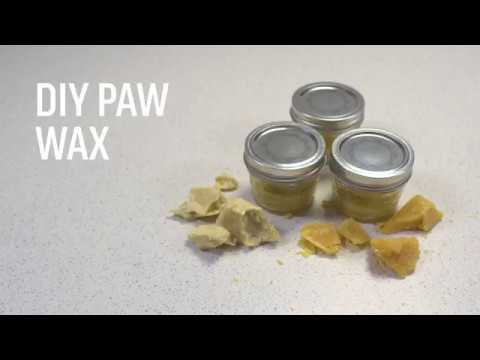 DIY Dog Paw Wax Recipe