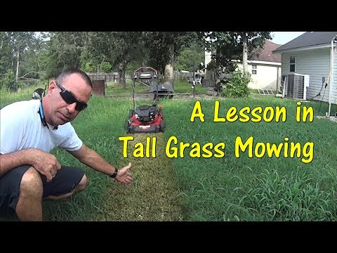 Pt 1 How To Cut Tall Grass with Basic Lawn Mower - Push Mowing Overgrown Thick Grass Crazy Finish