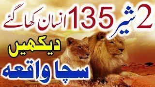 2 Sher 135 Insanon Ko Zinda Kha Gaye Sachi Kahani