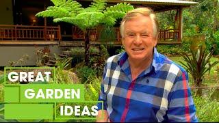 DIY Rainforest Garden Inspiration | Gardening | Great Home Ideas