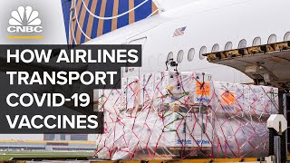 How U.S. Airlines Transport Covid-19 Vaccines