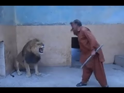 Stupid Zoo Keeper Almost Lost His Arm!!!