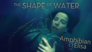 ☾under the sea☽  💧 Amphibian & Elisa | The Shape of Water
