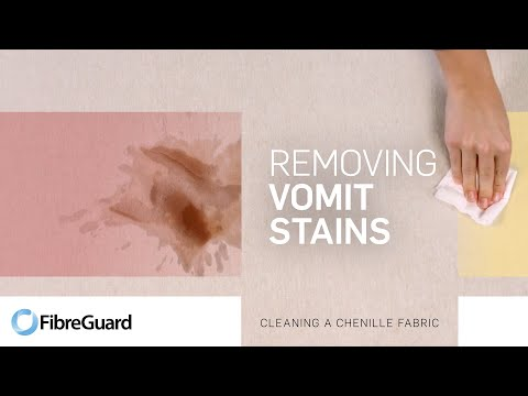 Removing vomit stains from a chenille fabric
