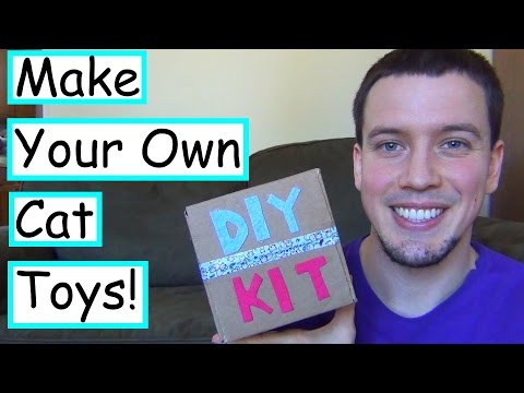 DIY Smores Cat Toy Kit   Miss Maddy Makes DIY Kit Review/Attempt