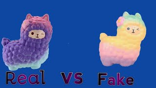 Download Fake vs. Real Squishy Tag! Video