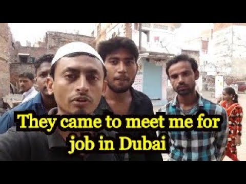job in Dubai 422, Your new friend came to meet me