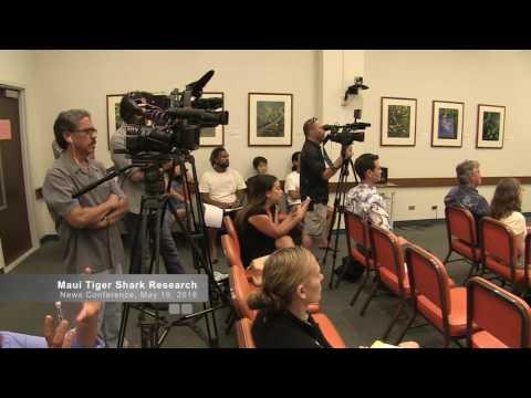 Maui Shark Tagging Research Presentation HD