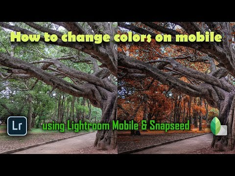 How to Change Colors on Mobile   Snapseed   Lightroom Mobile   Android   iPhone