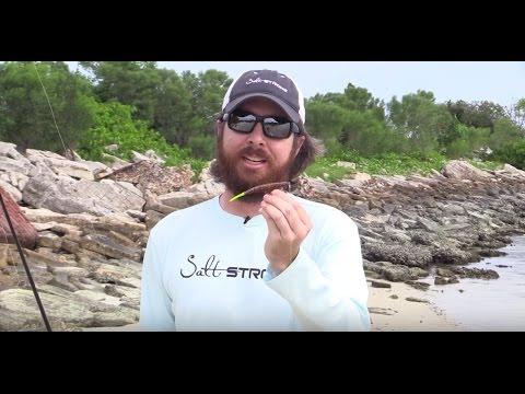 How To Retrieve A Soft Plastic Jerk Bait [Inshore Fishing Tip w/ Underwater Footage]