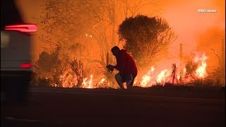 Man pulls over to save a  wild rabbit from a wildfire in Ventura, California.