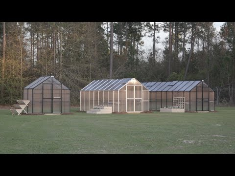 Urban Farming: Greenhouses Let You Grow Food All Year