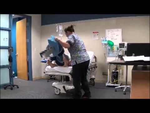 Chamberlain College of Nursing Capstone Hip Fracture Senior Project 2014