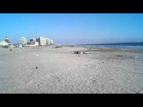 The San Diego Tour : Coronado Beach