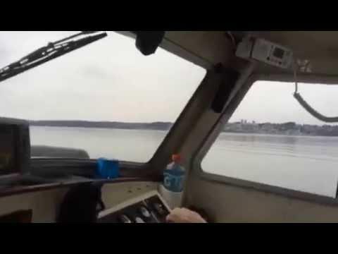 Seasport on the water