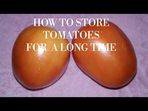 5 Easy Tomato Preservation  Tips in Hindi / Best way to Store Tomatoes for Months  /Rubi's Recipes