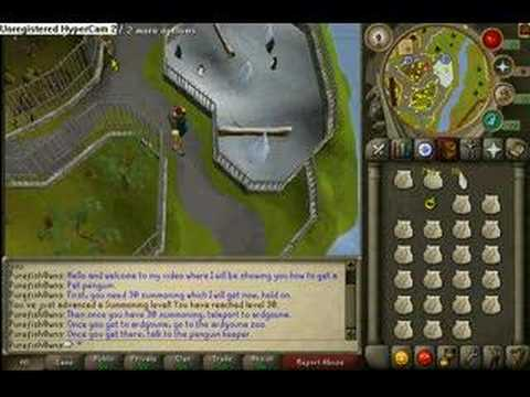 How To Get A Pet Penguin On Runescape