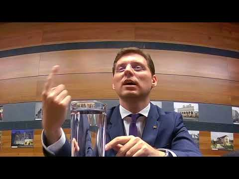 Victor Negrescu Romania's perspective on EU security and Immigration