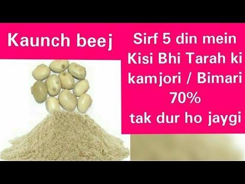 Macuna Seed | Kaunch ka Beej | Sirf 5 din mein Kisi bhi tarah ki BIMARI aur KAMJORI 70% dur ho jaygi