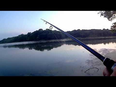 Catching BIG Bass using Senkos - Summer Bassin - Long Island, NY