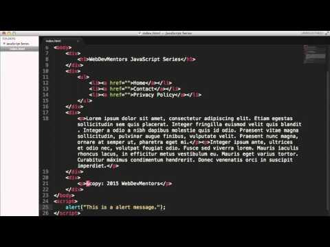 Alert function in Javascript