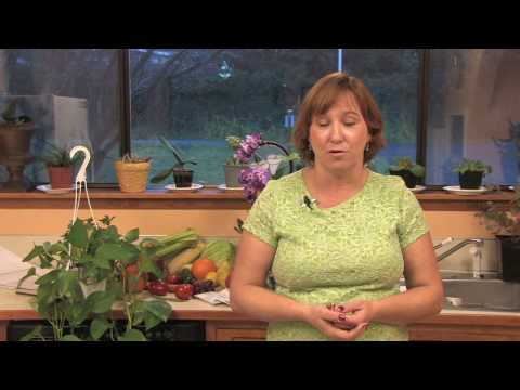 Gardening & Plant Care : How to Remove Moss From Grass