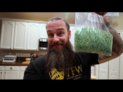 Really Good for You - Broccoli Sprouts - Full 5 Day Sprouting Process