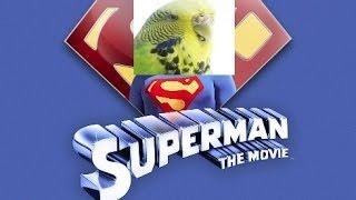 Tweestweets The Movie - Teaser (HD)