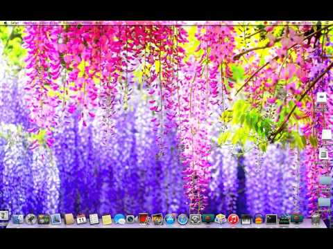How to get a google image as your background on a mac