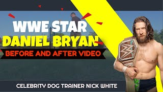 WWE Stars: John Cena, Daniel Bryan, and Bella Twins