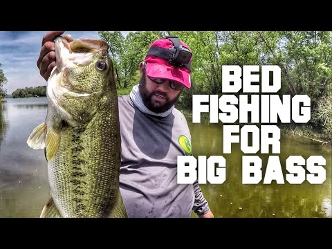 The Secrets of Bed Fishing - How to Fish for Bass During the Spawn