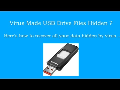Recover USB Drive Files Hidden by Virus [How to]