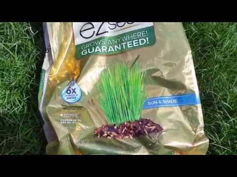 Planting Grass With Scotts (R) EZ Seed