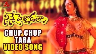 Chup Chup Tara Video Song   Ninne Pelladatha Movie   Nagarjuna,Tabu