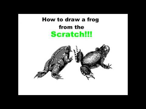 How to draw a frog in easy steps. http://www.wikihow.com/Draw-a-Frog