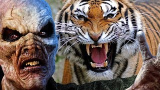 BEST Pets to Have During the Zombie Apocalypse